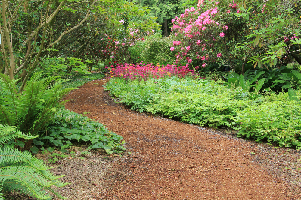 Enjoy the benefits of mulching your yard
